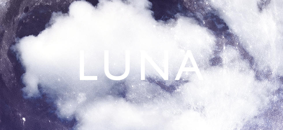 Luna Print by Dig The Earth