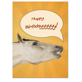 """Outside: Happy Birthdayyyyyy!!!  Inside:  """"Well there you have it, straight from the horse's mouth."""""""
