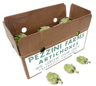 Heirloom Green Globe Artichokes, CASE, Extra Small (52-86)