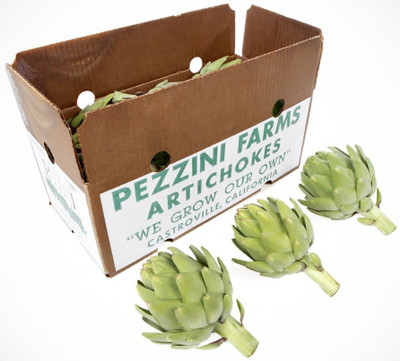 Heirloom Green Globe Artichokes,  CASE, Jumbo (8-10)