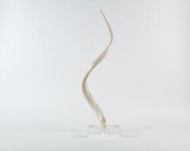 Kudu Horn Core on Acrylic Base
