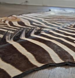 Zebra Animal Skin Rug
