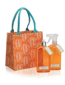 Orange canvas tote with bottles of kitchen cleaner and dish soap