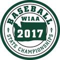 State Baseball 2017 Patch