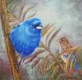 Indigo Buntings, oil painting
