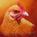 Buffy, Buff Orpington Hen