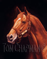 A Giclee print of Secretariat after he claimed the Triple Crown in 1973