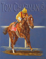Curlin Wins the Dubai World Cup, 2008 - horseracing giclee print