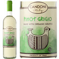 Candoni Organic Pinot Grigio Veneto IGT