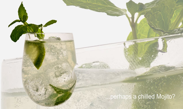 govino-cocktail-glass-mojito.jpg