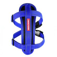 Chest Plate Harness Blue