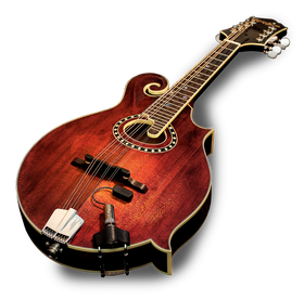 LR Baggs Radius Transducer Pickup for Mandolin
