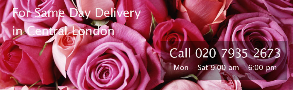 Same Day Delivery in Central London