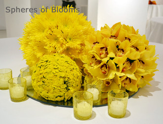 Spheres of Blooms Workshop