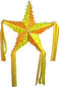 Sunshine Star Pinata