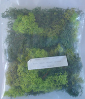 JAVIS Assorted Green Lichen