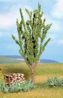 NOCH 21680 Poplar Tree 12cm 00/HO/N
