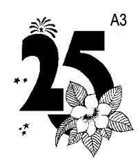 a-03.jpg
