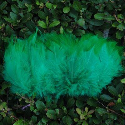 peacock-green.jpg