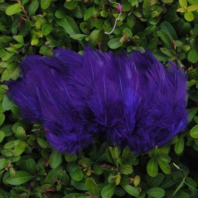 purple-feather.jpg