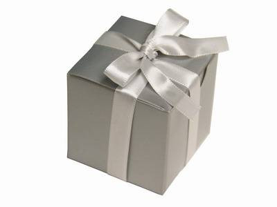 Silver Color Favor Box