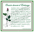 Prayer Card - Pregnancy - 1 card - SPANISH
