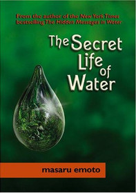Secret Life of Water - Paperback
