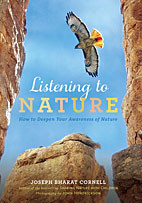 Listening to Nature - How to Deepen Your Awareness of Nature
