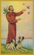 St. Francis of Assisi - Tall Jar Candle