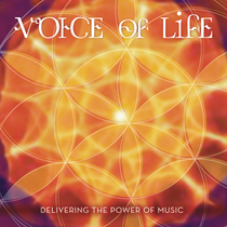 Voice of Life - David Ari Leon CD