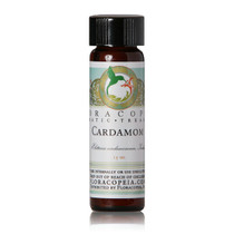 Cardamom Essential Oil - 1/2 oz