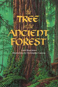 The Tree in the Ancient Forest - Paperback