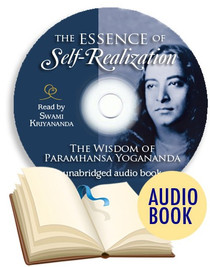 The Essence of Self-Realization Audiobook MP3