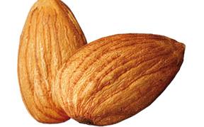 almond-icon.jpg