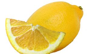 lemon-icon.jpg