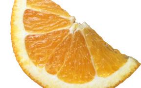orange-peel-icon2.jpg