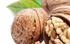walnut-icon.jpg