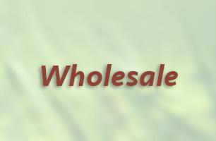 wholesale-icon.jpg