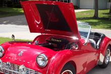 Triumph TR3 Bonnet Liner With or Without Triumph Shield Emblem
