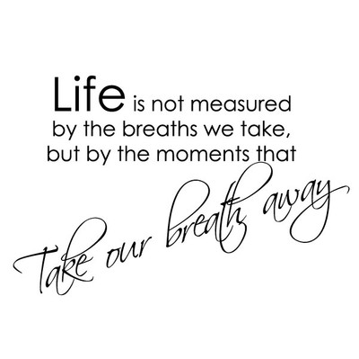 Life is not measured by the breaths we take wall quote sticker