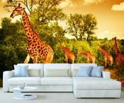 African Safari Giraffe Wall Mural