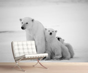 Arctic Polar Bear Wall Mural