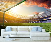 Football Goal Net Stadium View Wall Mura