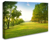 Greenland Forest Wall Art Canvas 8998-1018