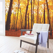 Autumn Forest Tree Wall Mural 3