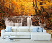 Autumn Forest Tree Wall Mural 5