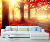 Autumn Forest Tree Wall Mural 6