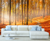 Autumn Forest Trees Wall Mural 8999-1152