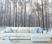 Winter Forest Trees Wall Mural