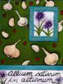 """Magnet """"Allium Sativum In Aeturnum"""""""